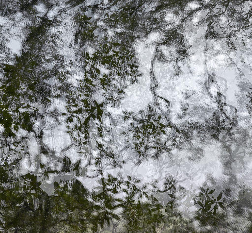 "Eric Bouret, ""walk-Landscape 11"", 2016"